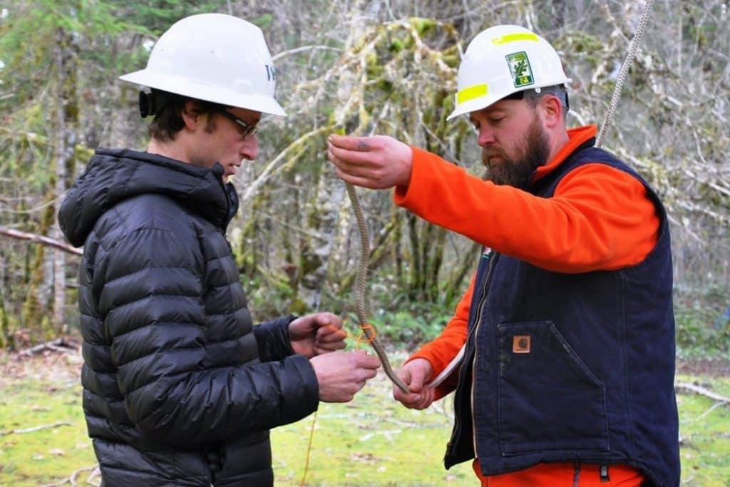 tree-climbing-course-development