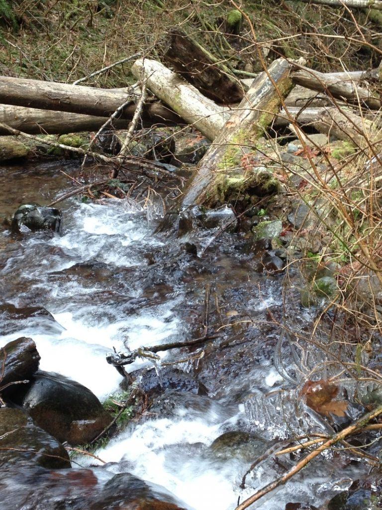 Stream-and-Salmon-Habitat-Restoration