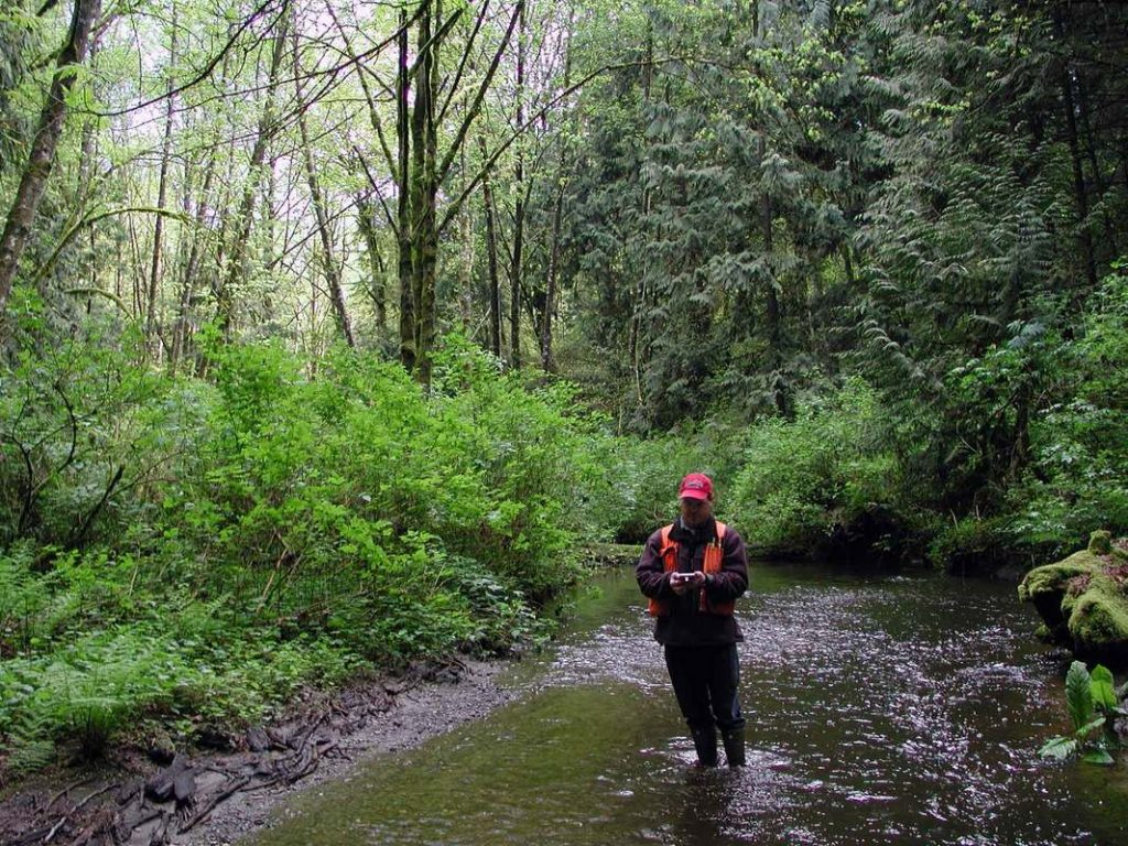 Stream and wetland delineation