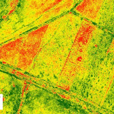 vegetation-mapping-NDVI
