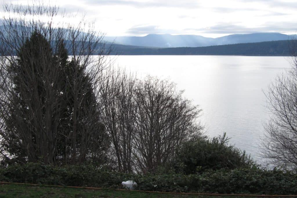 resident-shoreline