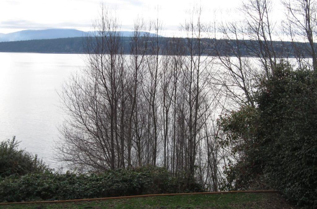 resident-homeowner-shoreline