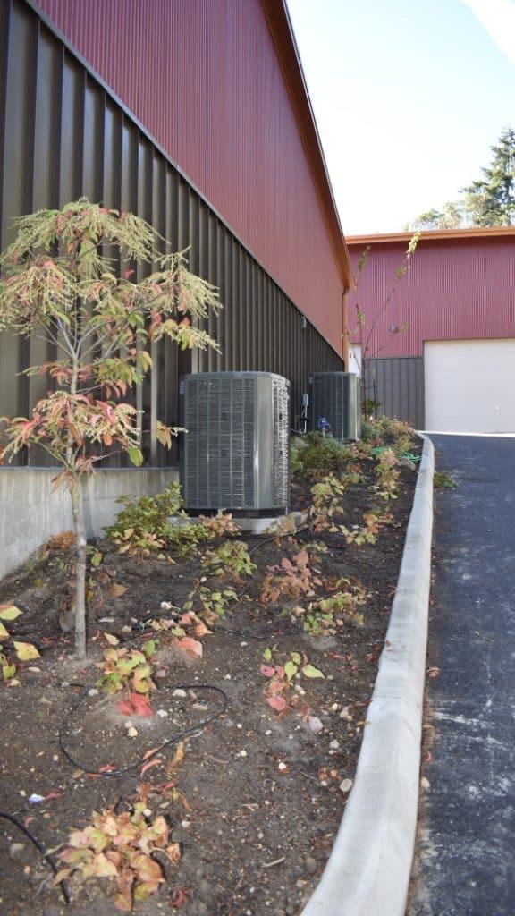 landscaping-irrigation-plant