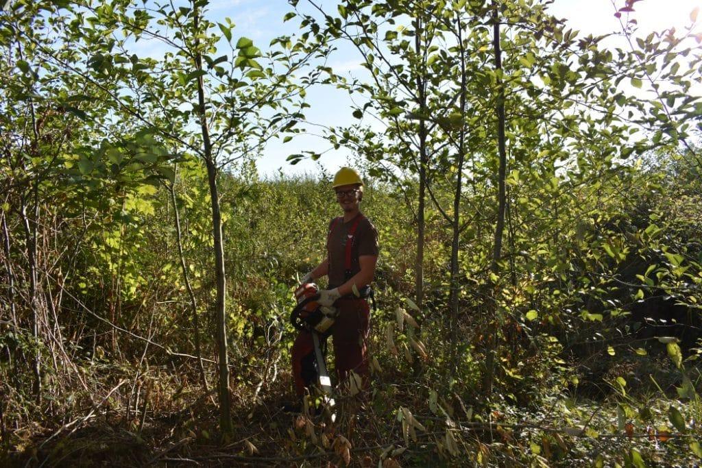 restoration_forest_conservation_public_trails