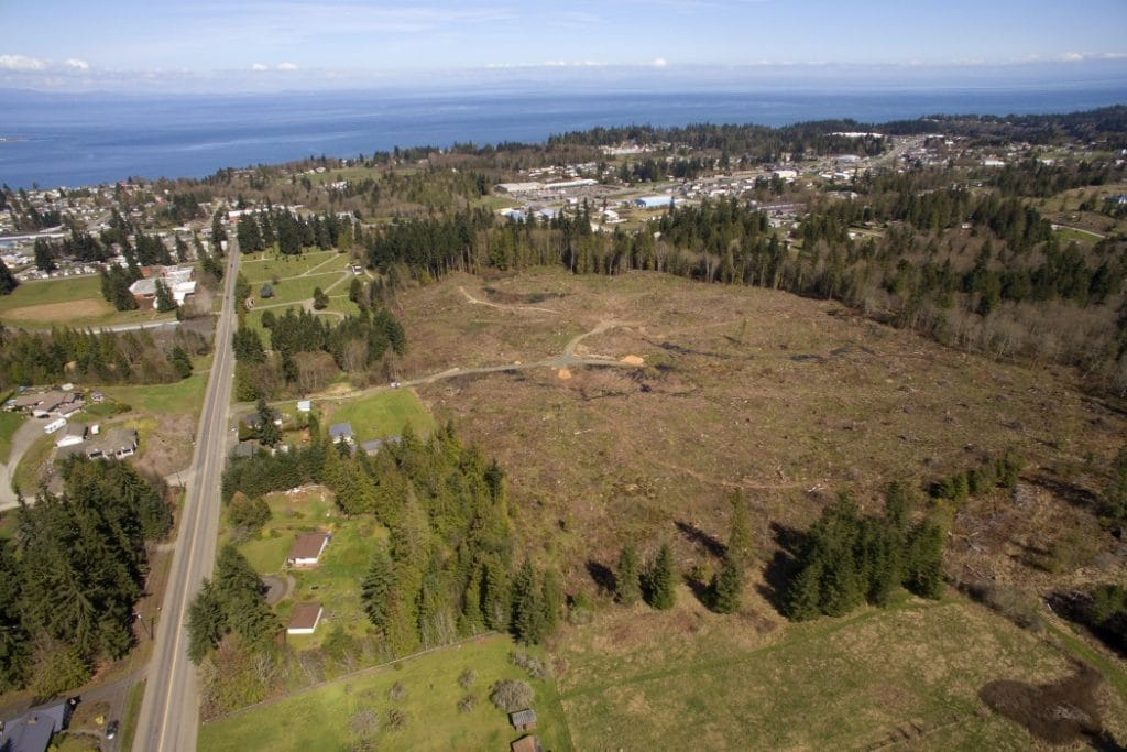 restoration-forestry-woodlands-Port-Angeles-WA