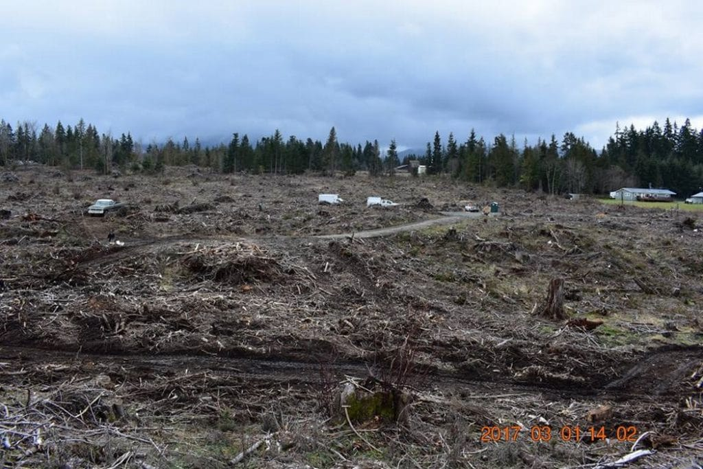 restoration-woodlands-Port-Angeles-WA