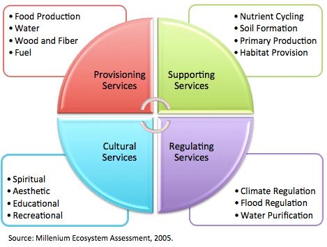 Ecosystem-services-Millennium-Ecosystem-Assessment