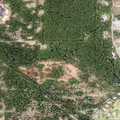 tree-conservation-arborist-evaluation-assessment-permitting-code