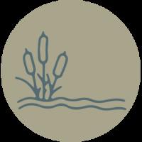 large_wetland_icon